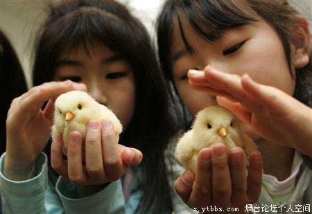 两位美女对我的小鸡鸡爱不释手