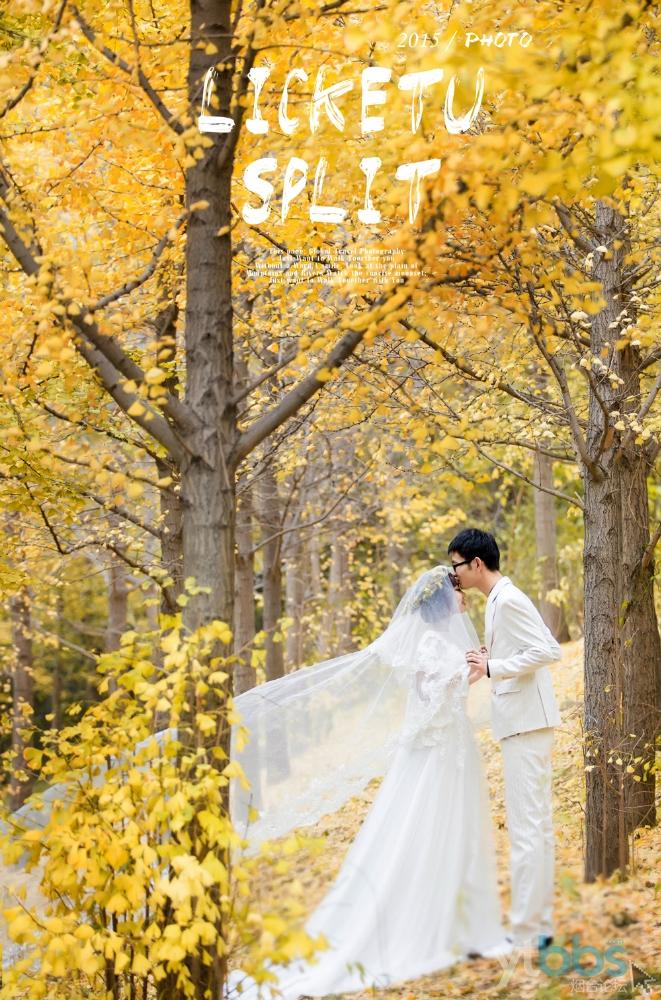 [婚纱影楼] 秋天我为我们洒下金色的爱,感谢红馆视觉团队