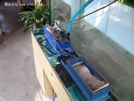 上滤鱼缸改造_自制鱼缸过滤盒图片图片展示_自制鱼缸过滤盒图片图片下载