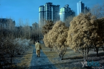 视觉港城(红外摄影)--百花园晨曲