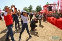 第十二届中国▪烟台大樱桃节开幕啦