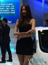 2015年烟台春季车展